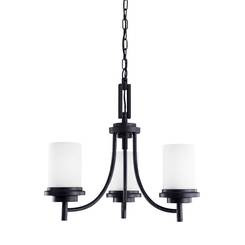 Sea Gull Lighting 31660-839 Three Light Chandelier