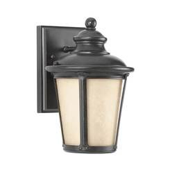 Sea Gull Lighting 88240DEN3-780 One Light Outdoor Wall Lantern