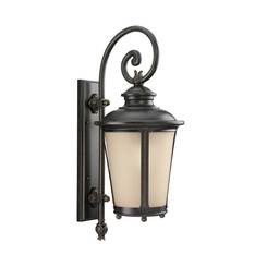 Sea Gull Lighting 88242EN3-780 One Light Outdoor Wall Lantern